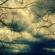 Depotalarm: Unsere Antworten auf den Herbststurm
